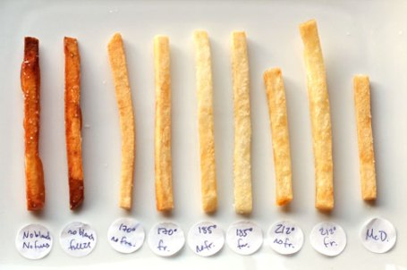 Thin cut French Fries of Kenji Lopez-Alt in Serious Eats