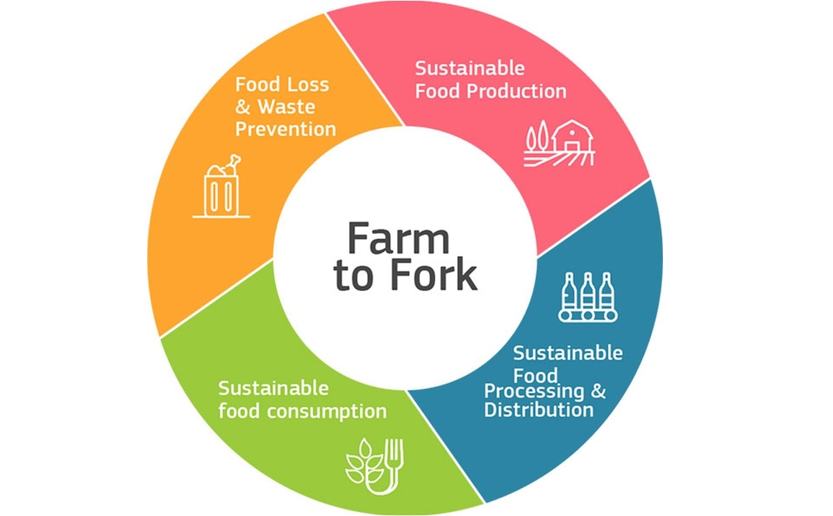 Europatat welcomes the Farm to Fork strategy and calls on the Commission to  ensure a coherent and realistic approach | PotatoPro