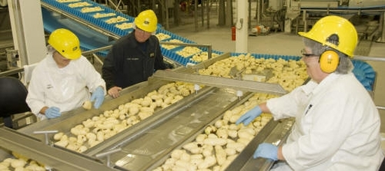 McCain Foods (Canada) opens new Florenceville French fry