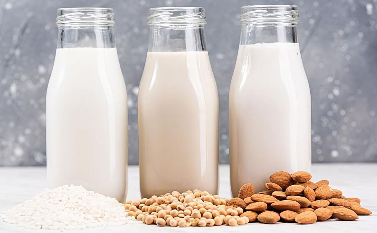 Oat milk, soy milk and almond milk are all dairy alternatives