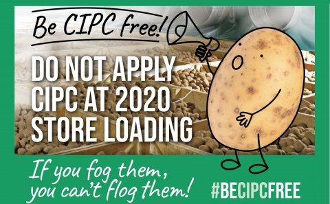 AHDB warns UK potato growers not to use CIPC at 2020 store loading