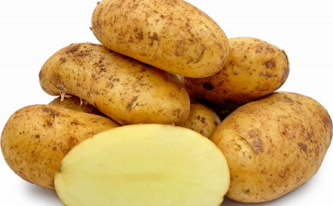 Lively demand for Cypriot early potatoes in Germany