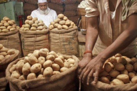 Potato Production India might be up 25-30 % over last year