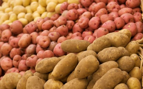 2019 a Banner Year for Potato Sales – 2020 Very Concerning
