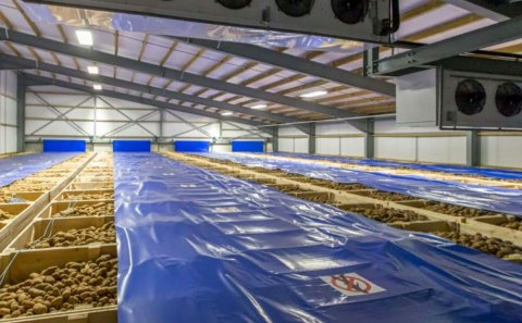The Future of UK Potato Storage Research
