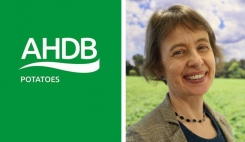AHDB Potatoes appoints a new chair and five new board members