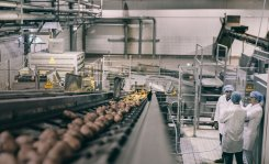 Application of PEF in French Fries production: an Elea / Wernsing success story since 2012