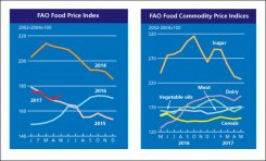 FAO Food Price Index rebounds in May
