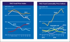 FAO Food Price Index down slightly in November 2016
