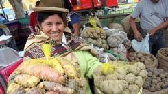 Perú es el primer productor de papa en Latinoamérica