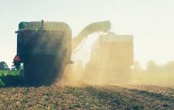 Door late aardappeloogst is de publicate van de NEPG oogstverwachting uitgesteld tot November