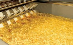 Potato Product Fryers: an overview
