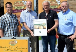 First German new potatoes harvested in Pfalz region