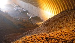 Lamb Weston is adding potato storage capacity in Pasco, Washington
