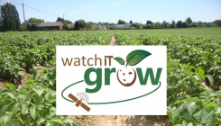 WatchITgrow: Belgium launches a country-wide geo-information system to strengthen the Potato (processing) industry