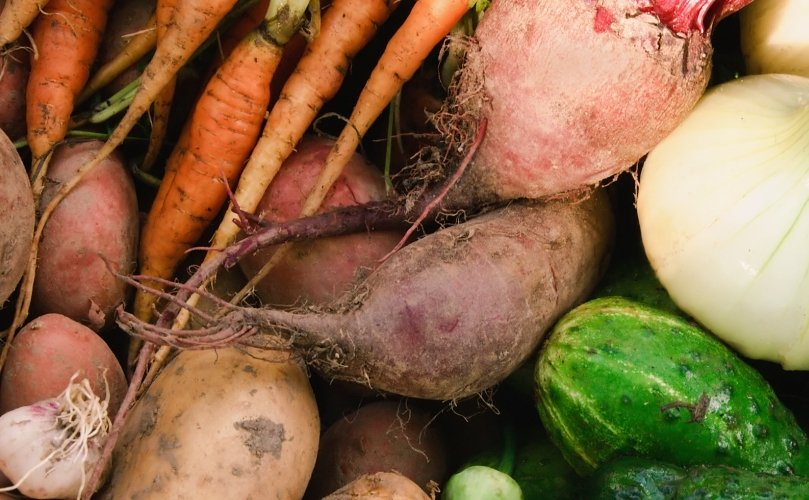 Joint farm-to-fork initiative against food waste in foodservice sector