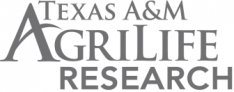 Texas A&M AgriLife Research